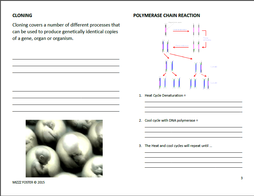 Genetic Engineering Worksheets With Answers