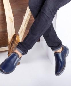 Pantofi barbati Piele Peterson albastri casual