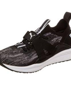 PUMA Sneaker Ignite Evoknit Lo 2
