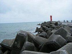 漁港外向き
