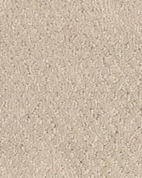 michigan carpet tile