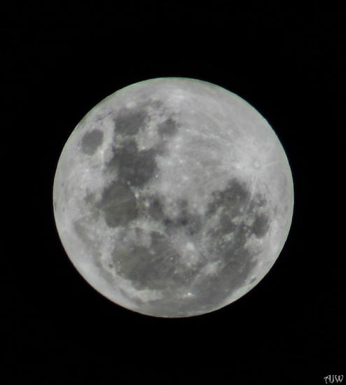 Full Moon on 365 Project