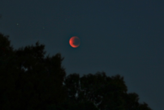 lunar eclipse on 365 Project