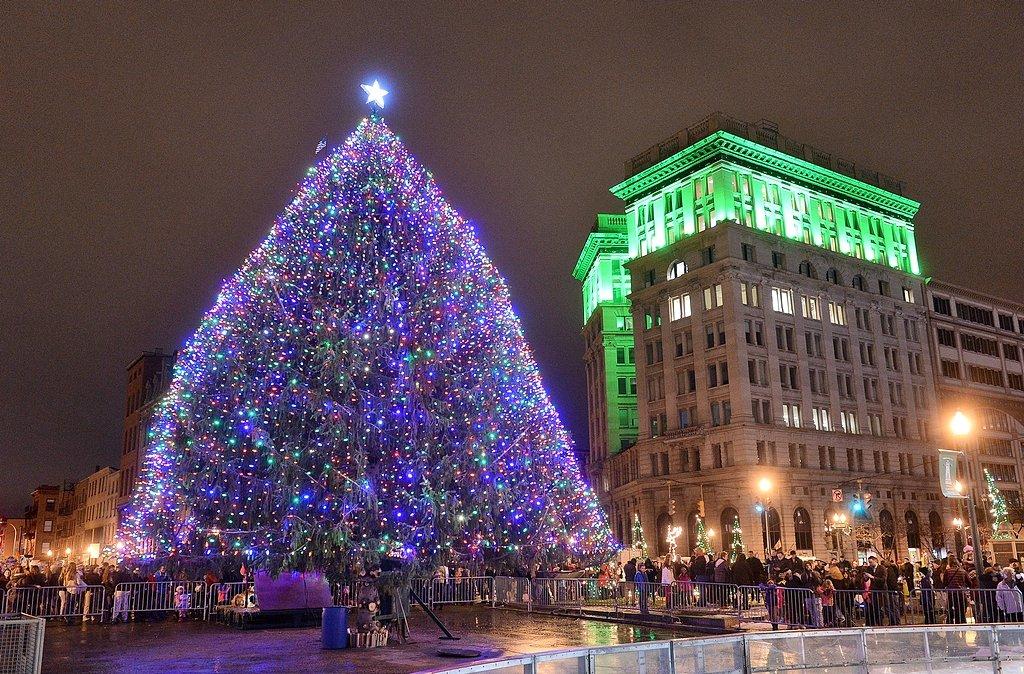 Buffalo Ny Real Christmas Trees