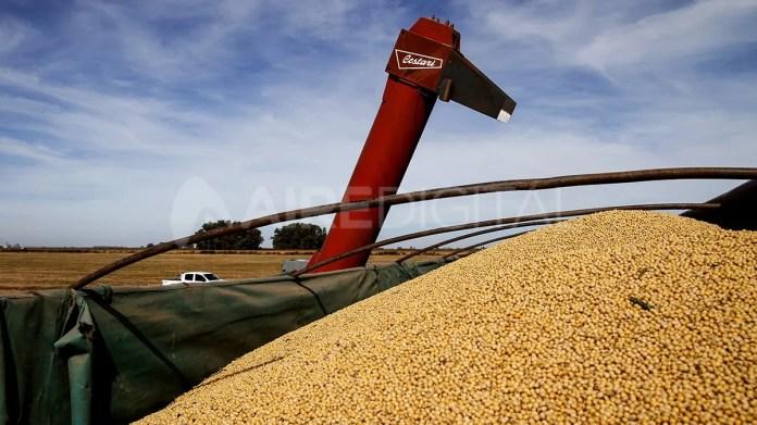 El índice toma en cuenta los precios de los productos básicos agropecuarios, como maíz, trigo, entre otros.