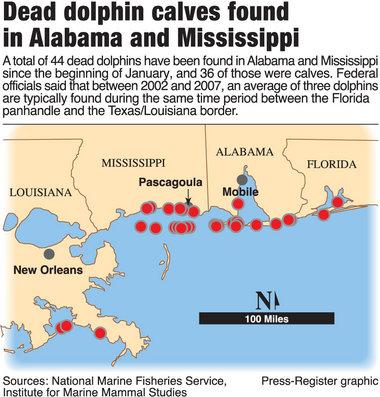dead-dolphin-map.jpg