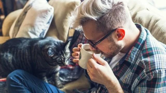 Si bien son más independientes, a los gatos los reconforta estar cerca de sus referentes más importantes.