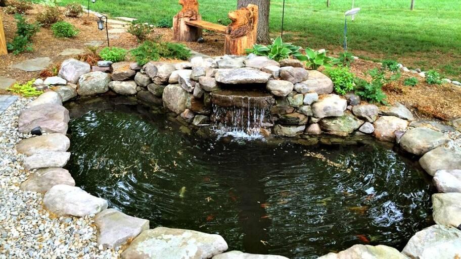 How to Clean Your Backyard Koi Pond | Angie's List on Backyard Koi Pond Designs  id=54116