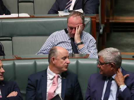 Barnaby Joyce says being successful in politics is both a blessing and a curse – the better MPs are at their job, the more they are relied upon and called on to travel to help other colleagues. Picture: Gary Ramage