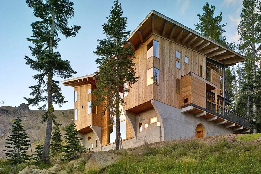 Seven Must-See Modern Houses In The Woods Photos