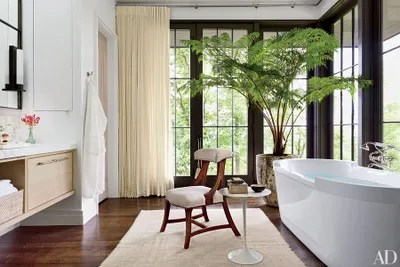 How To Add House Plants To Any Home Architectural Digest