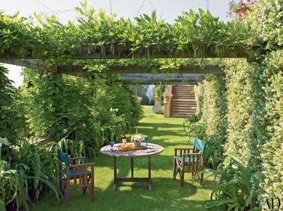 25 Inspiring Trellis Amp Pergola Ideas For Your Backyard
