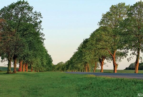 capability brown english landscape gardens 4 English Garden Ideas Inspired by Capability Brown Photos