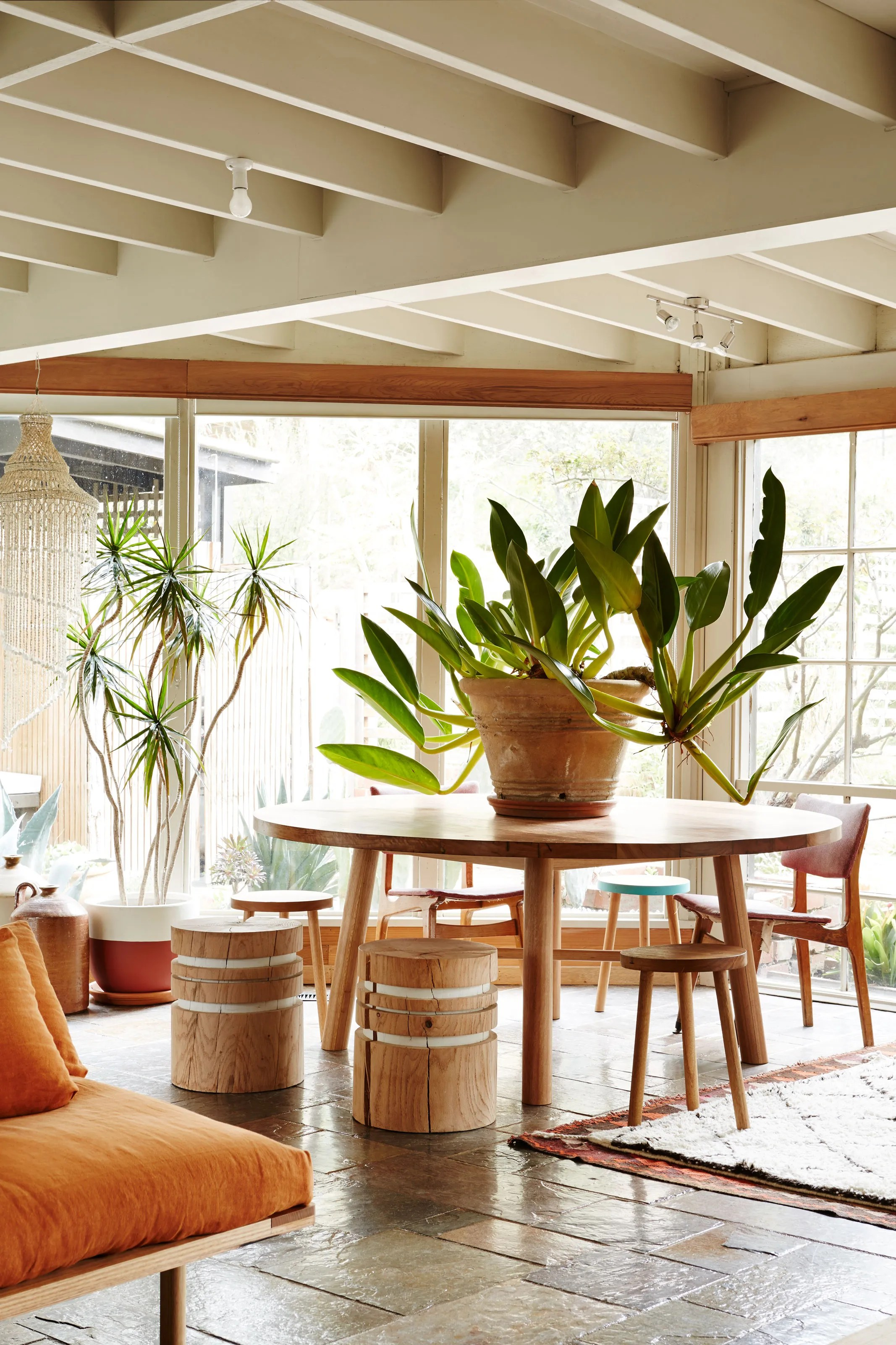 put a big indoor plant on your table