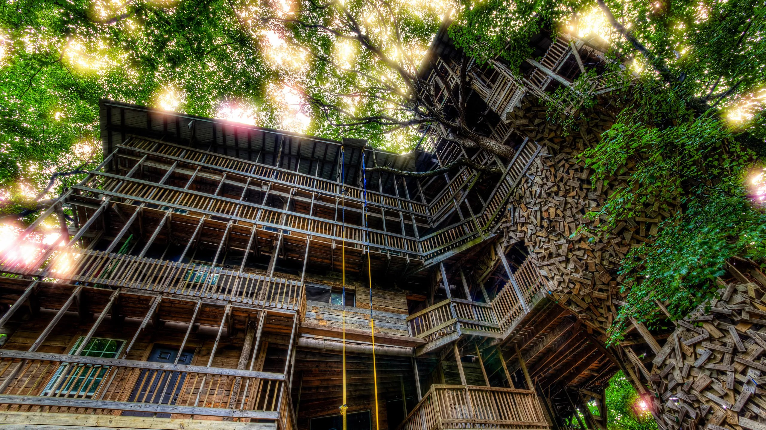 The World S Largest Treehouse Burned To The Ground In Less Than 15 Minutes Architectural Digest