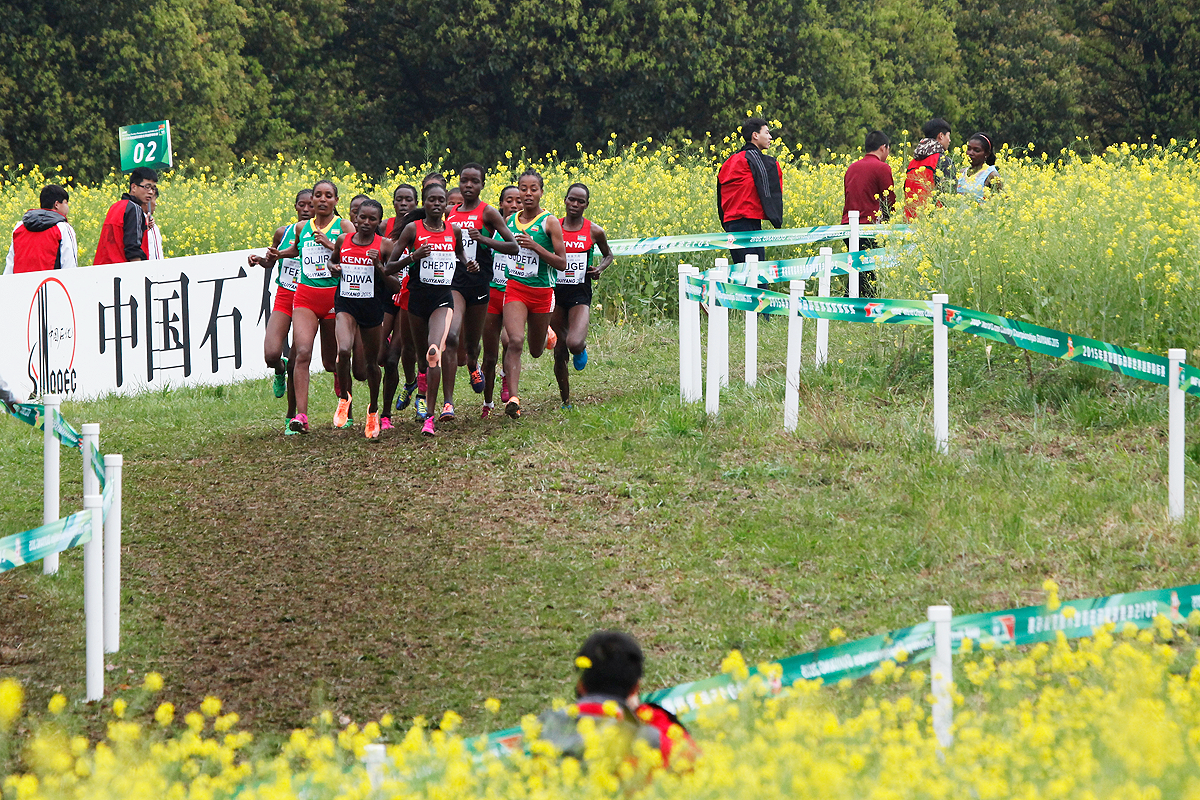 Cross Country | iaaf.org