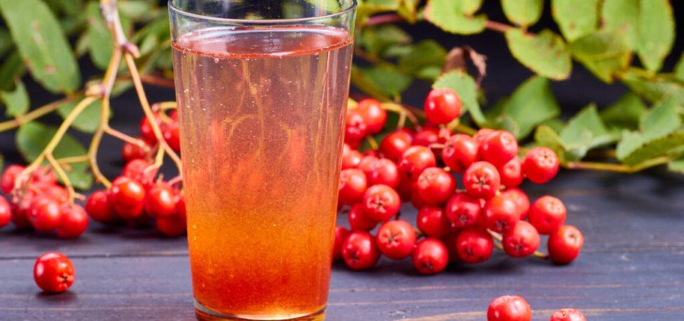 recept rönnbärsdricka