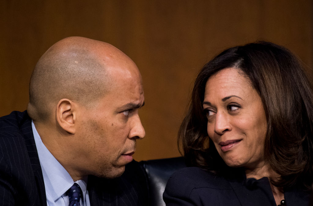 Image result for photos of kamala harris questioning nielsen