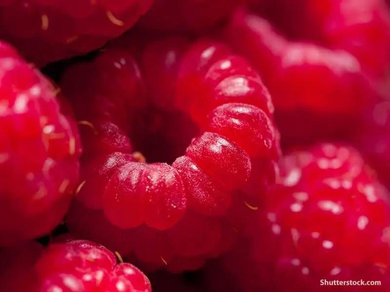 closeup-raspberries
