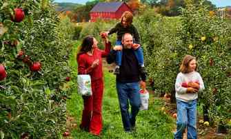 apple picking as a family