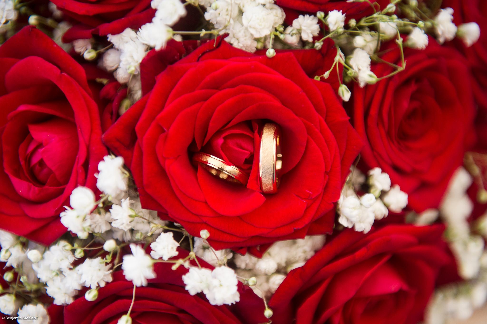 Les alliances dans entre les pétales des roses du bouquet de la mariée