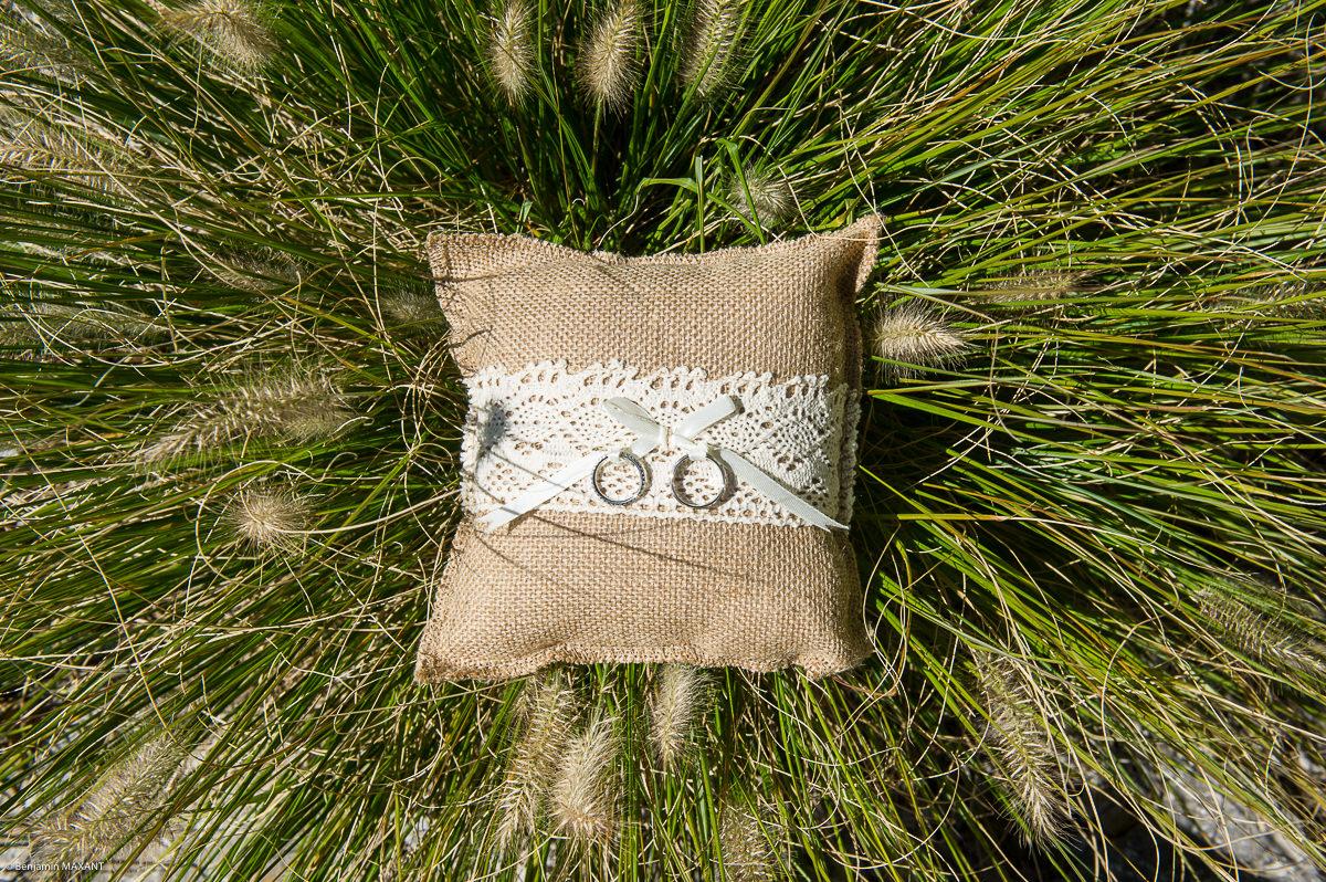 Alliances sur le coussin dans l'herbe