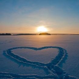 Hjärtan - 100