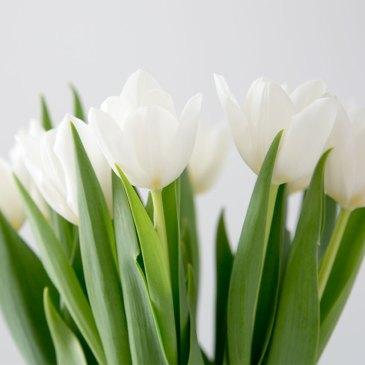 Sköna maj välkommen…