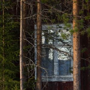 I ett hus i skogens djup? - Malin