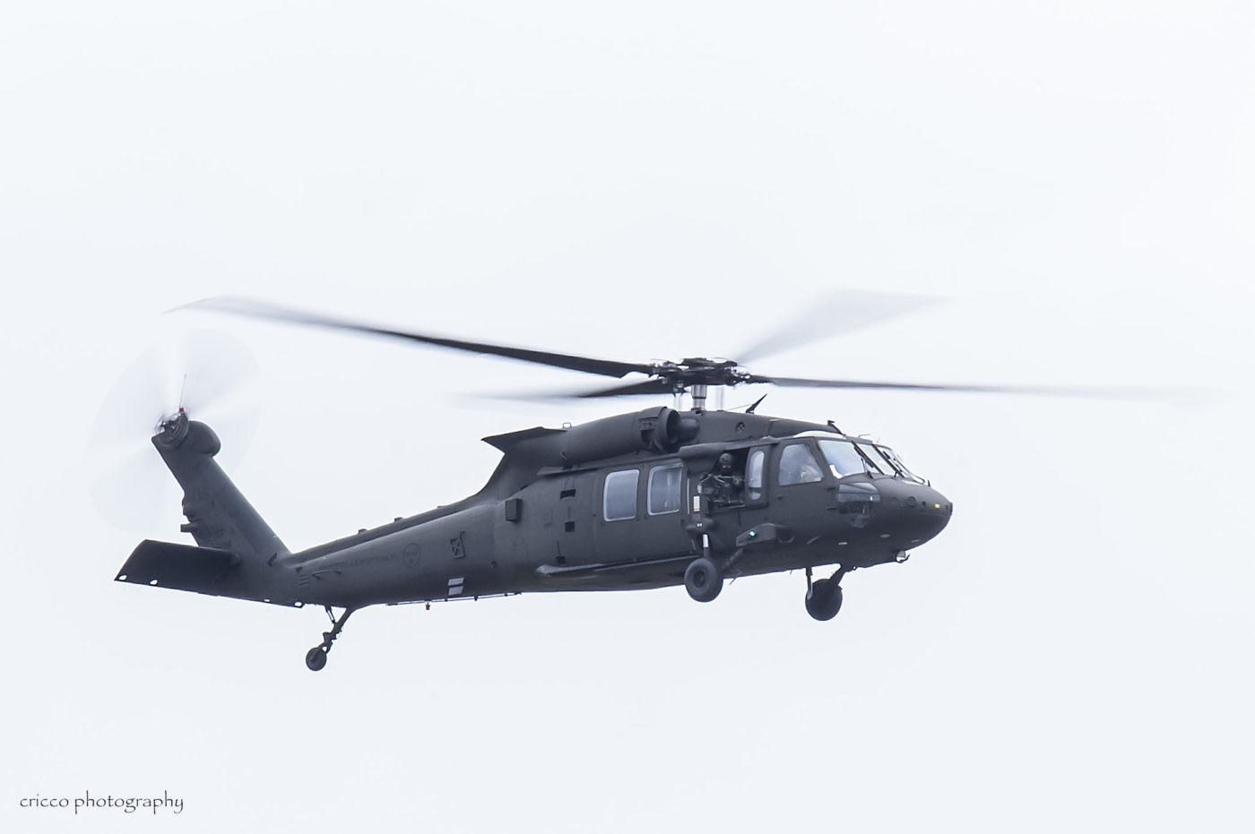 Black Hawk Cricco