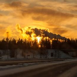 22 december - Cricco Piteå eftermiddag