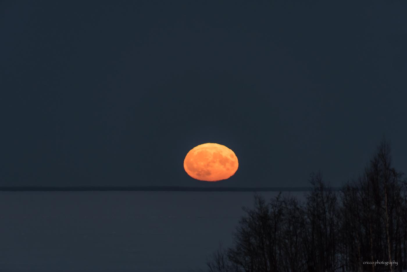 3 december - Cricco supermåne