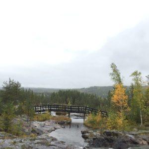 15 september - fotoutflykt till Storforsen. Här kan alla ta sig fram, t.o.m. en regnig och halkig dag!