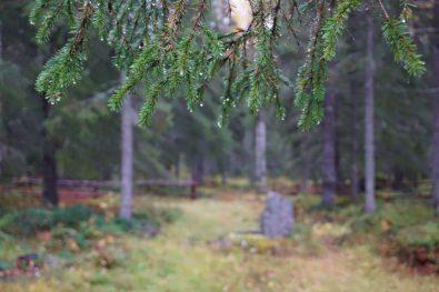 Hanhinvittikko fädbod. Ett kulturreservat - av Ewa