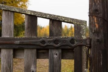 Grinden till Hanhinvittikko - av Malin