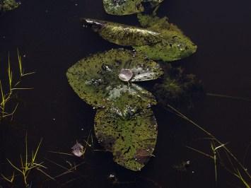 Keräsjoki - av Gunbritt