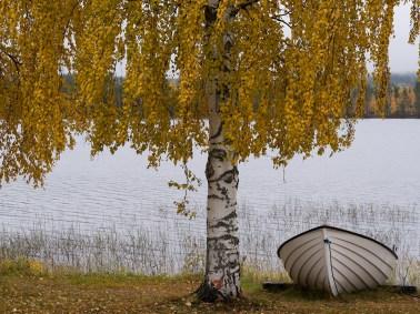 Kuurajärvi - av Gunbritt