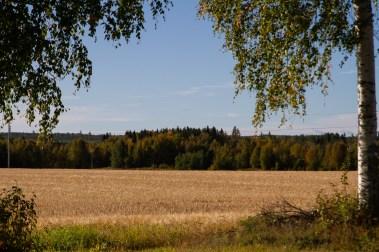 Åkermark - av Eva