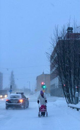 12 januari - polarvinterdag, av Ewa