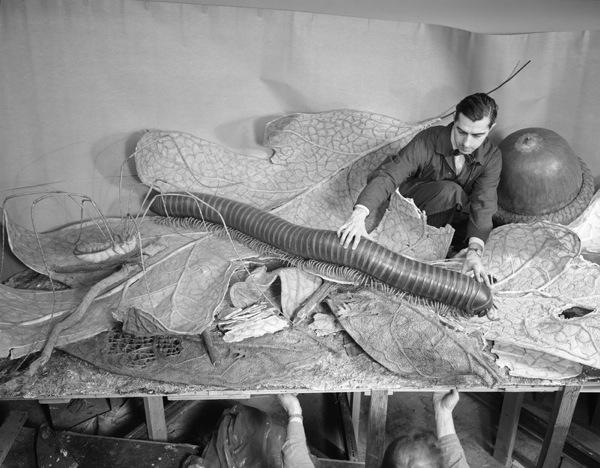 PicturingMuseum diorama 1958