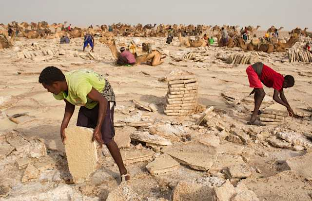 Amazing Images Of Salt Harvest In Ethiopia Boing Boing