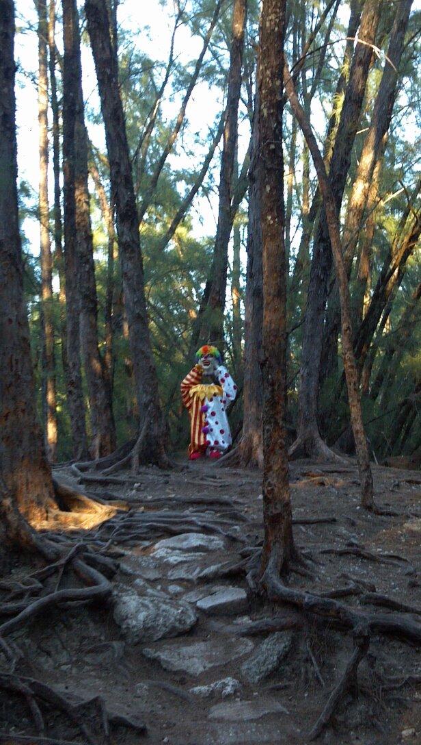 Horrifying clown statue deep in the woods