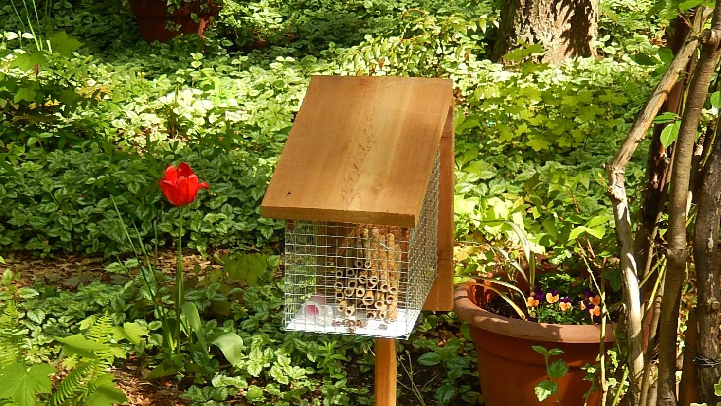 build your own mason bee house