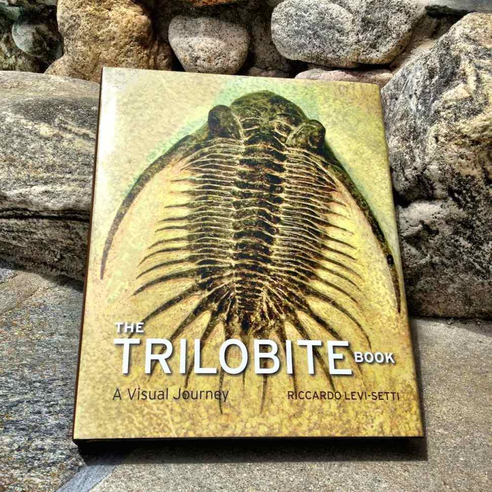The Trilobite Book – Stunning photographs of trilobite fossils that predate dinosaurs