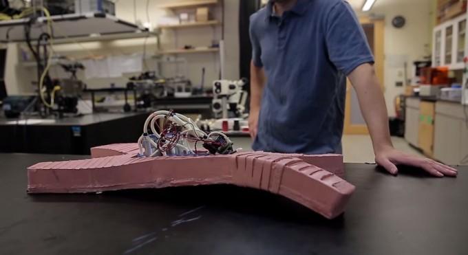 untethered-soft-robot