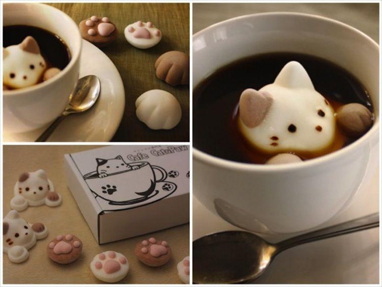 kitten-marshmallows