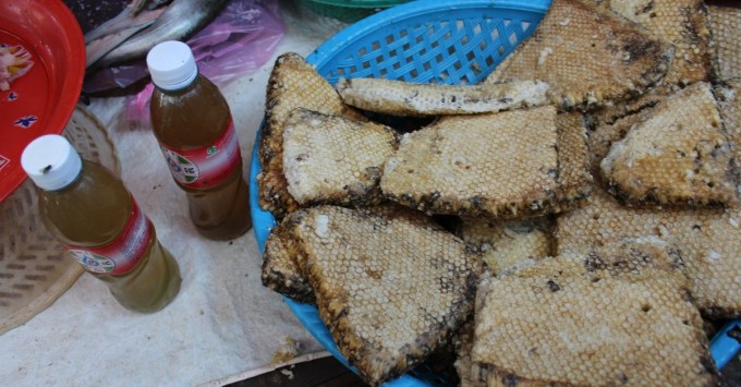 Cambodian Market Bee Brood