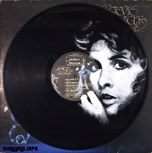 Stevie Nicks. Vinyl Art by Daniel Edlen.