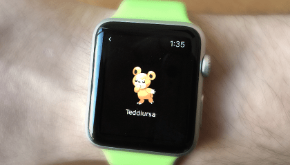random-pokemon-app-on-watch