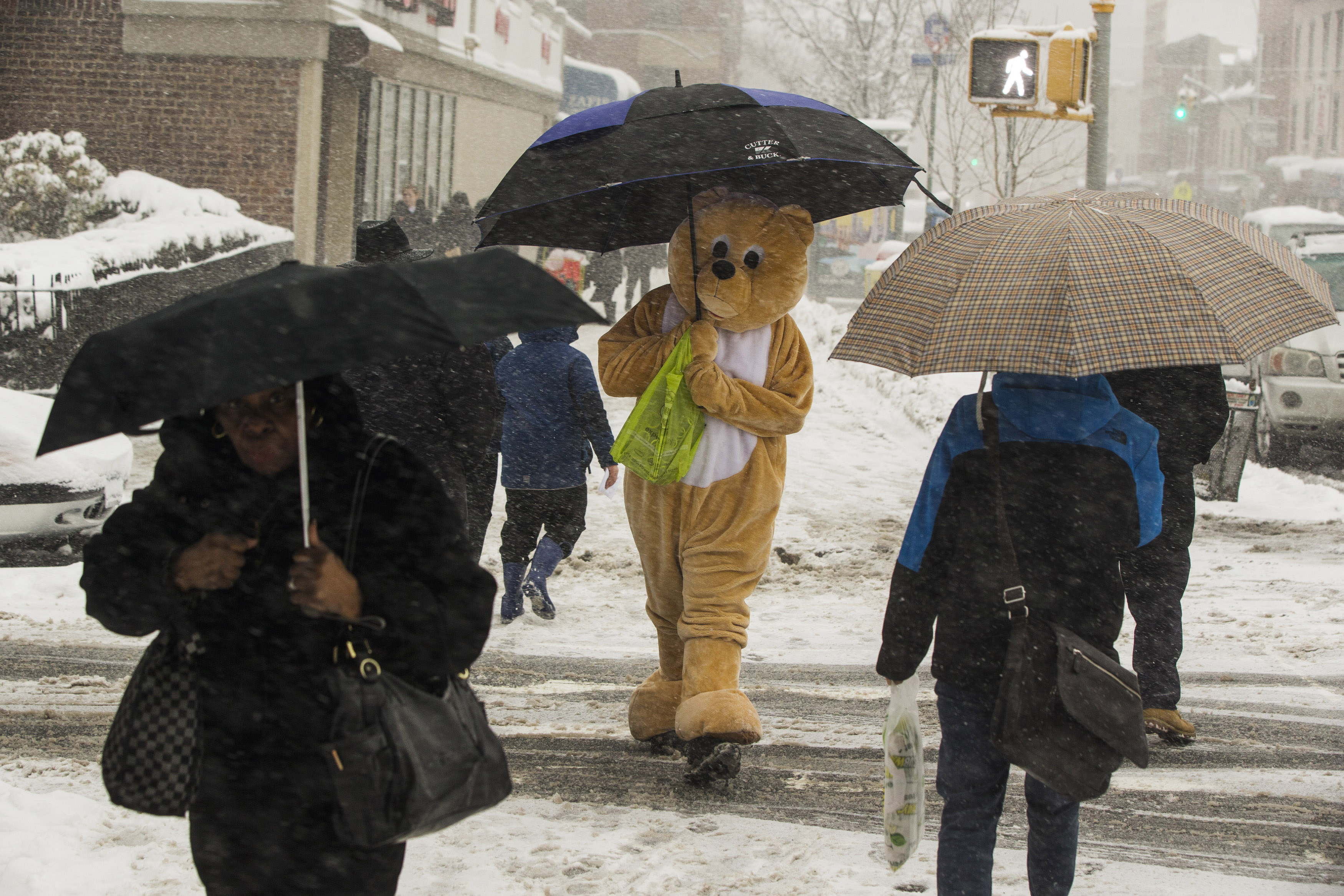 A pedestrian in an animal costume holds an umbrella while walking in a snowstorm in New York March 5, 2015. REUTERS/Lucas Jackson